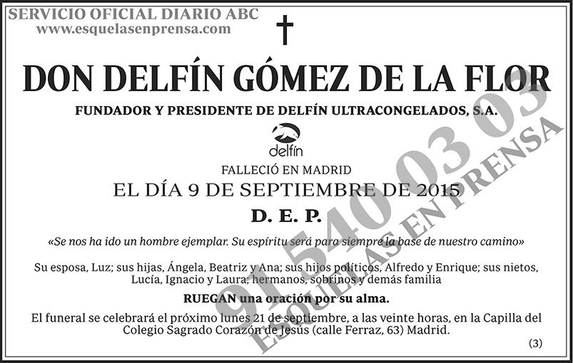 Delfín Gómez de la Flor